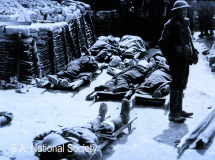 WWI - the casualties roll in. The grim reality (1)
