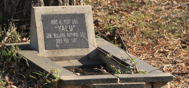 'Yalu' – General Buller's dog.